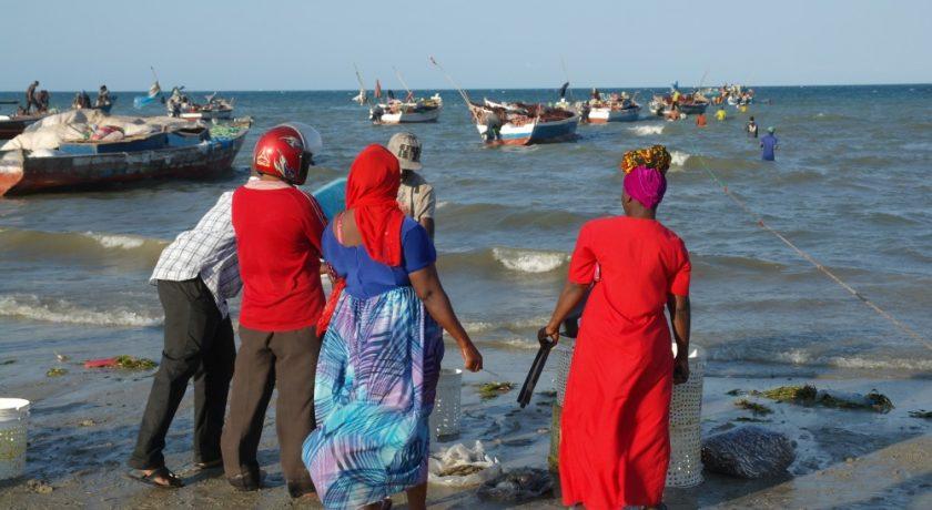 Tanzania reizen fotografie
