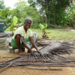 dakbedekking vlechten Sri Lanka